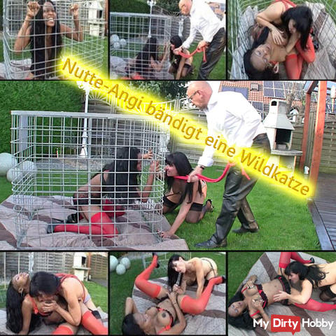 Hooker-Angi tames a wild cat in the cage