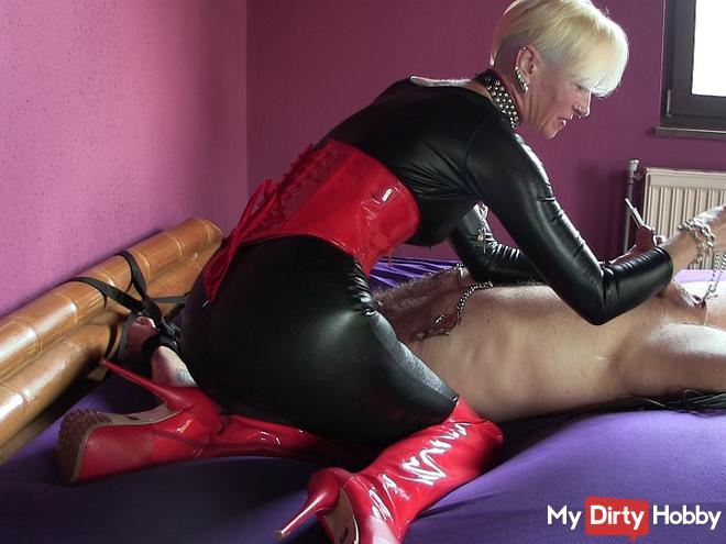 cuckold slave beaten, tortured and humiliated
