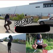 Public Strip pi**