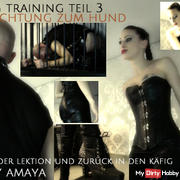 trained to dog - The dog training Last part