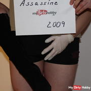 Assassine2009