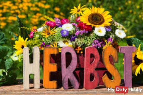 Herbs, Herbst.....