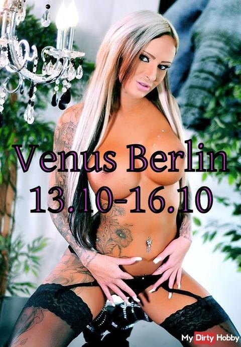 Das erste mal auf der Venus !