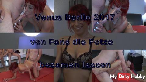 Venus Berlin, auch da brauche ich Schwänze und Sperma. ;-)