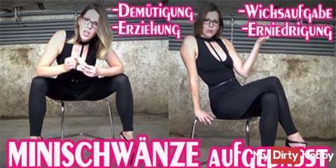 Neues Video - MINISCHWÄNZE aufgepasst!