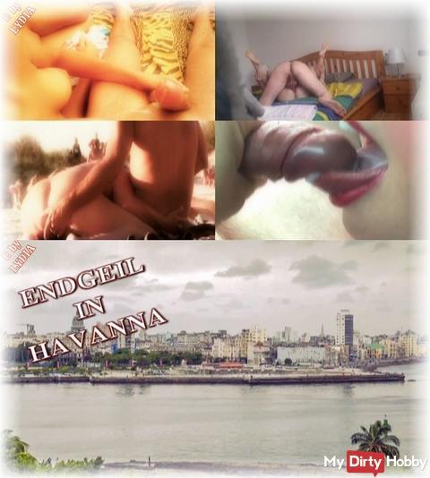 NEUES VIDEO: ENDGEIL IN HAVANNA
