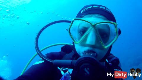 #Dive N°: 854 (1)