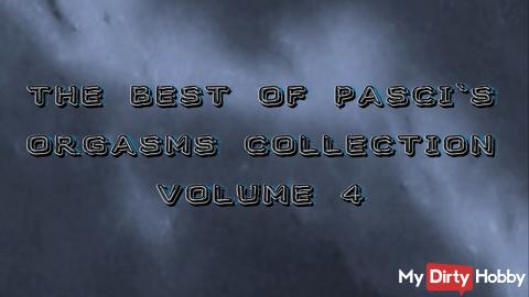 The Best of Pasci`s Orgasms Collection Volume 4