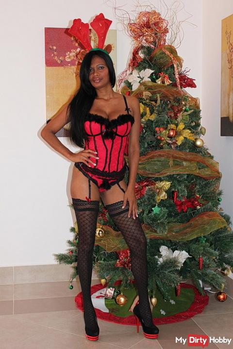 Frohe Weihnachten wünscht Schokobebe
