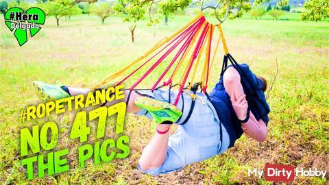 #Suspension N° 477 - The Pics