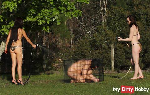 Der Sklave im Käfig