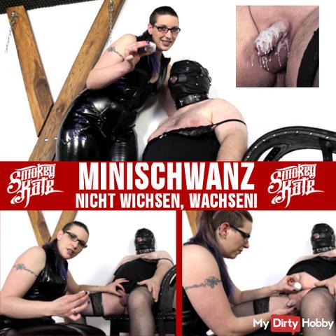 MINISCHWANZ