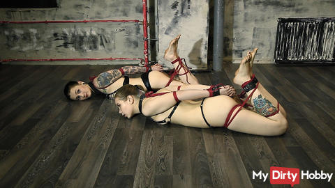 Slaves War: Escape from Hogties