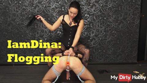 IamDina: Flogging