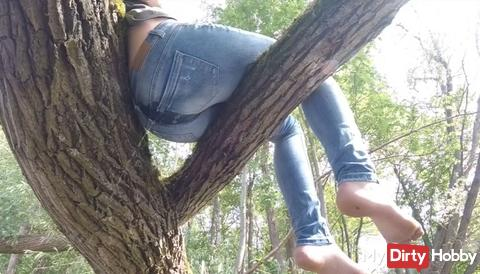 Hang in the tree and relax